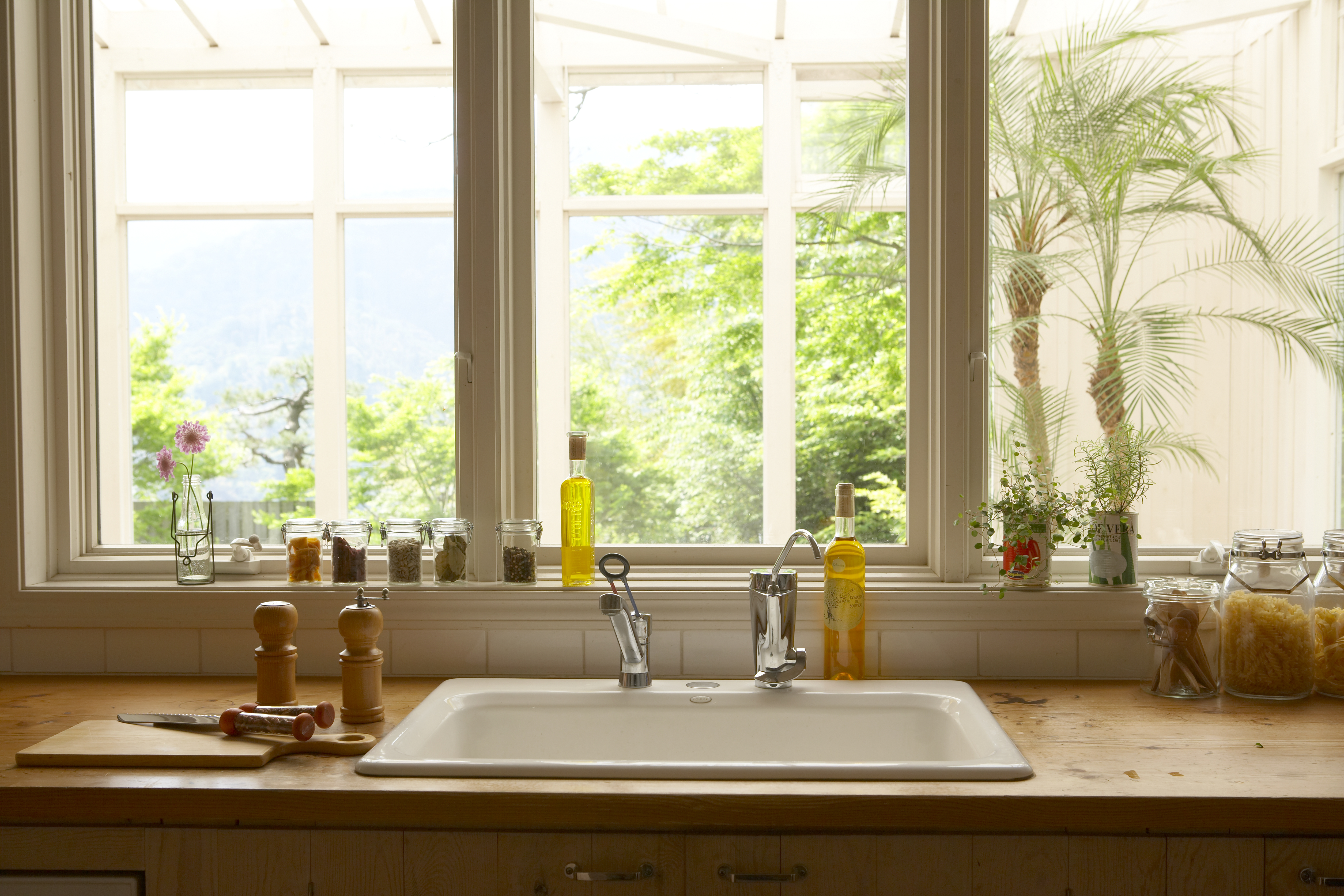 Learn how you can finally rid your kitchen of pesky fruit flies!