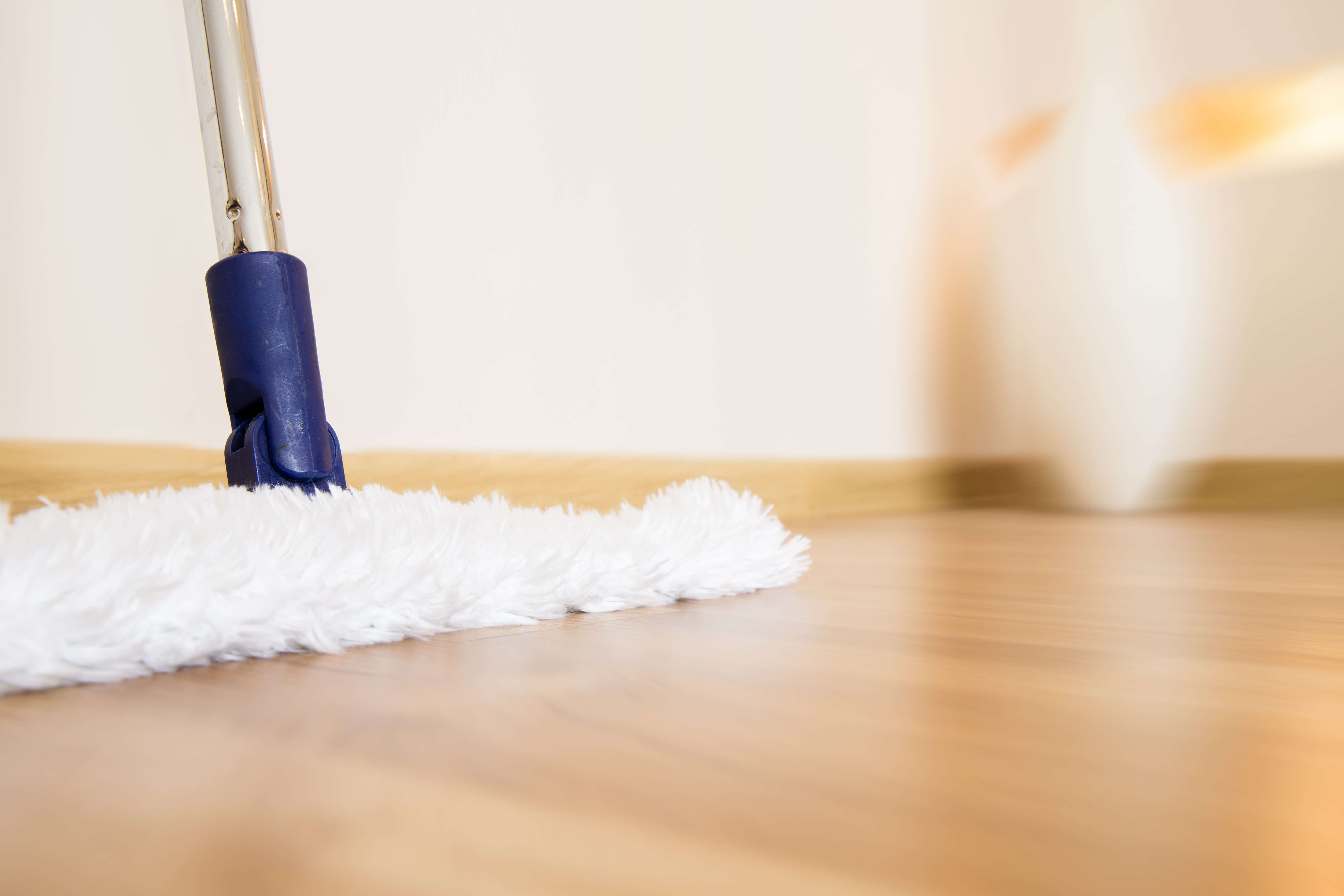 Discover how to maintain a dust-free home!